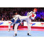 ** SEARCH CONCLUDED ** - CHIEF EXECUTIVE OFFICER  -  GB TAEKWONDO